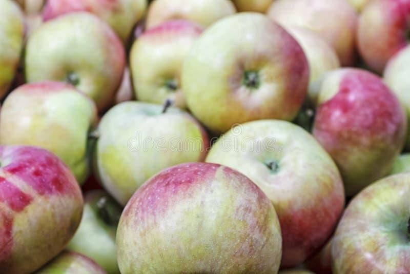 Groupe de pommes dans une boîte photos stock
