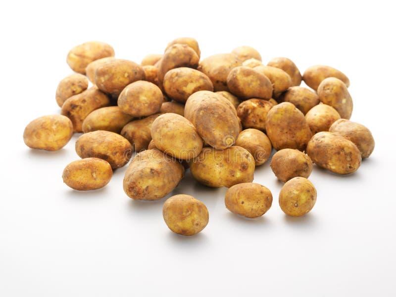 Groupe de pommes de terre de primeurs fraîches photos libres de droits