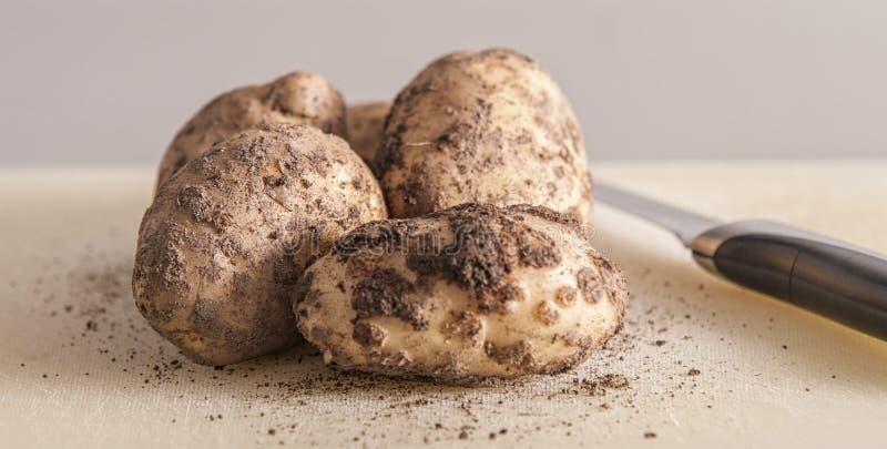 Groupe de pommes de terre sur la fin blanche de fond vers le haut photographie stock libre de droits