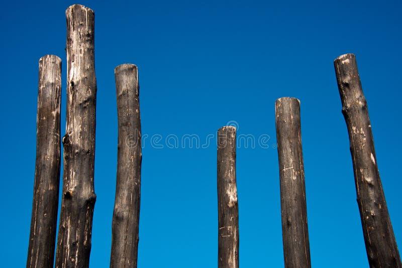Groupe de poteaux en bois carbonis?s photo libre de droits