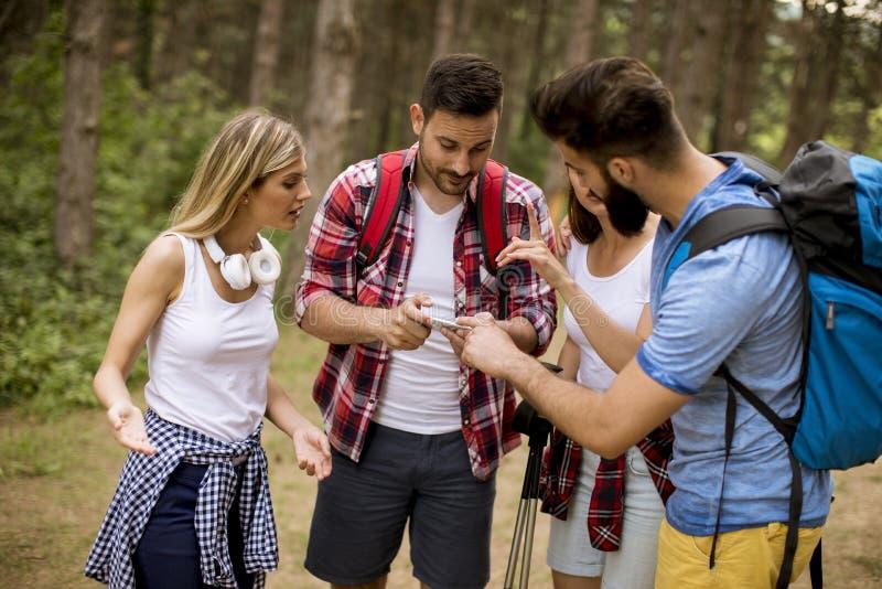 Groupe de quatre amis trimardant ensemble par une forêt photographie stock libre de droits