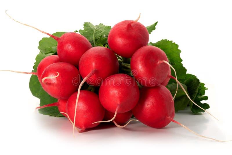 Groupe de radis rouge photos libres de droits