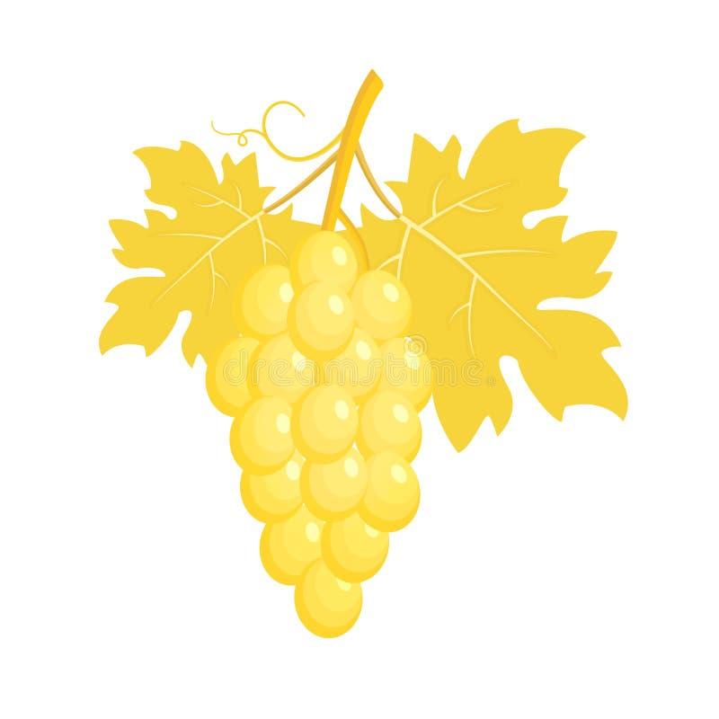 Groupe de raisins d'or illustration stock