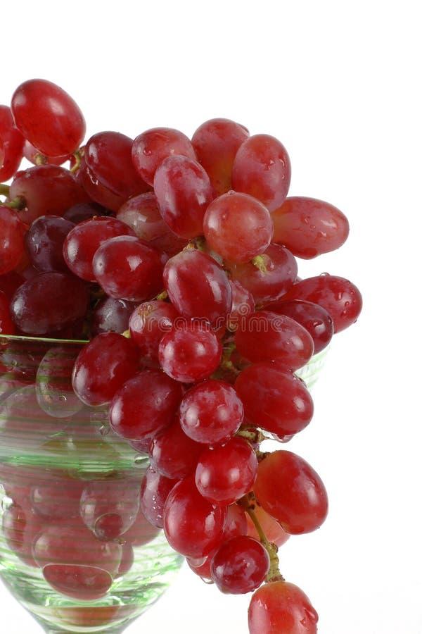 Groupe de raisins dans une glace de vin photographie stock
