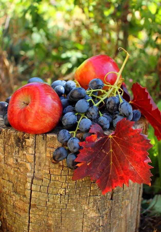 Groupe de raisins et de pommes photographie stock