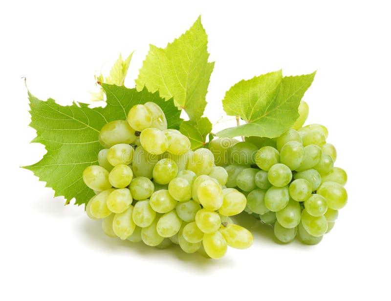 Groupe de raisins et de feuilles juteux mûrs frais verts photo libre de droits