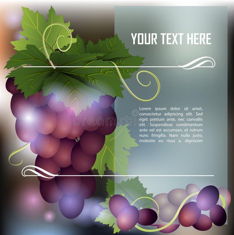 Groupe de raisins foncés illustration de vecteur