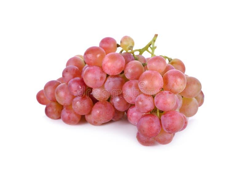 Groupe de raisins frais sur le fond blanc images libres de droits