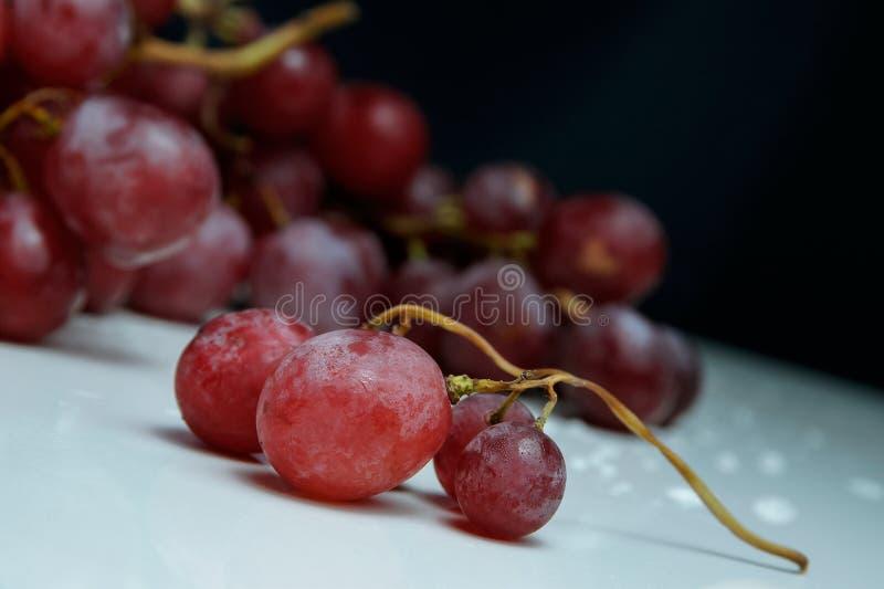 Groupe de raisins rose frais sur un fond blanc photos stock