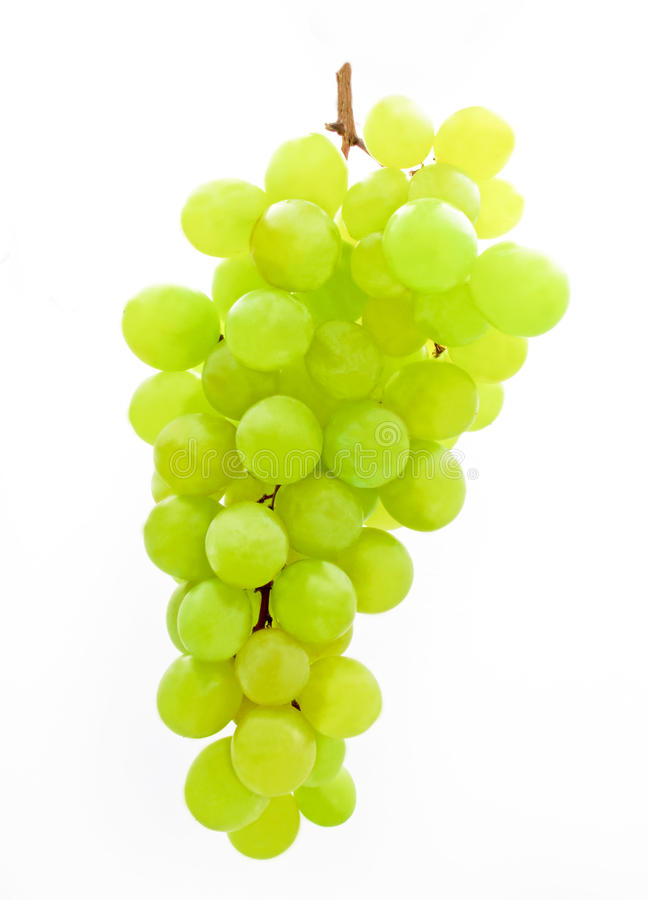 Groupe de raisins verts photo libre de droits