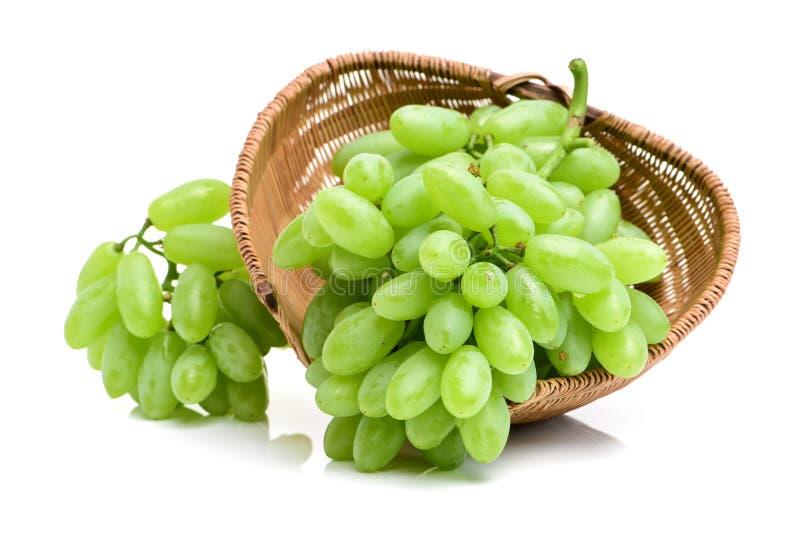 Groupe de raisins verts photographie stock
