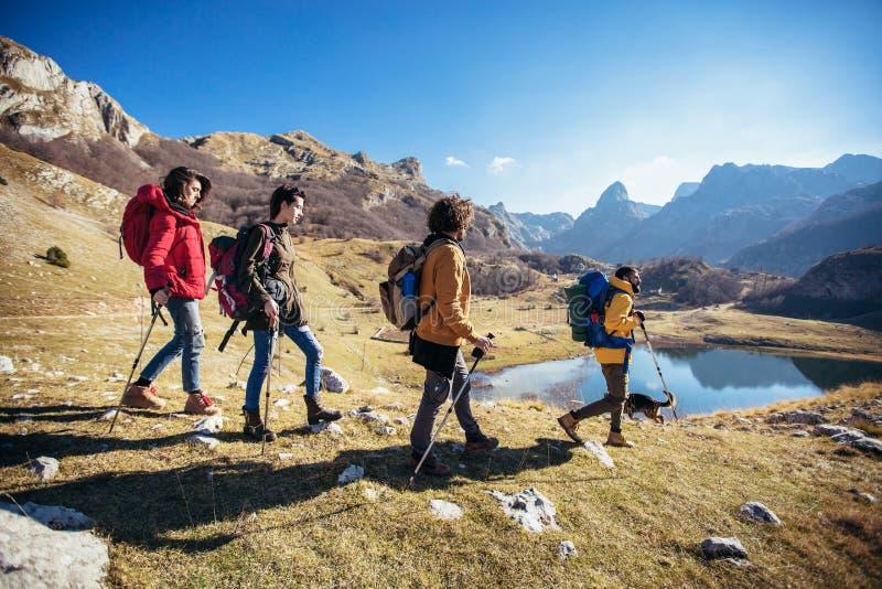 Groupe de randonneurs marchant sur une montagne image libre de droits