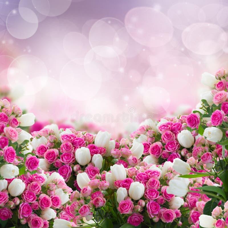 Groupe de roses et de fleurs de tulipes photo stock