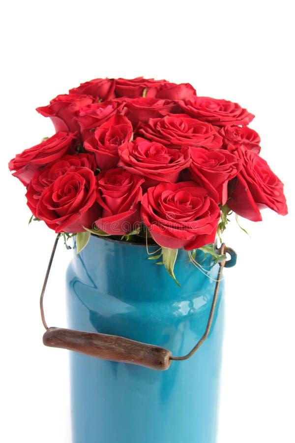 Groupe de roses rouges photos stock