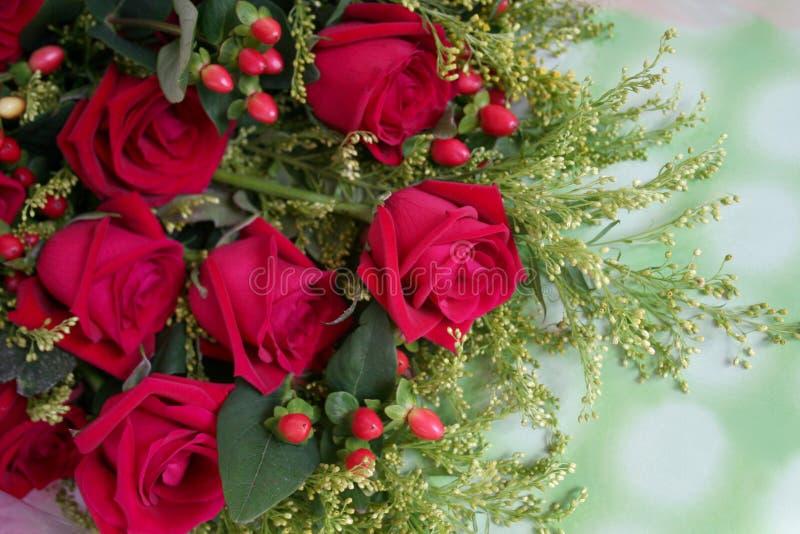 Groupe de roses rouges photo stock