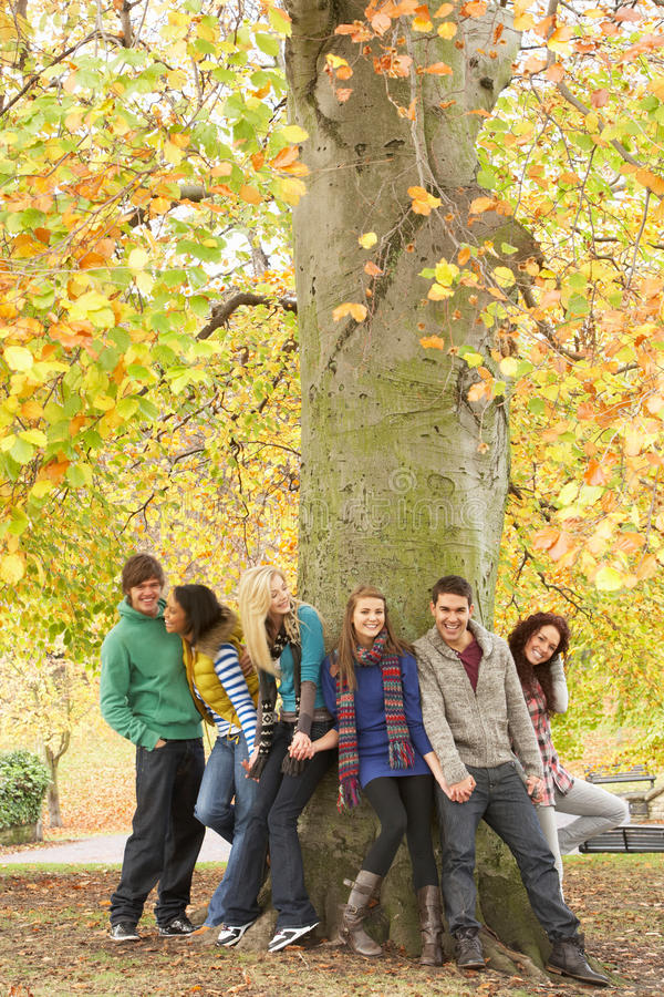 Groupe de six amis d'adolescent se penchant contre l'arbre photo libre de droits