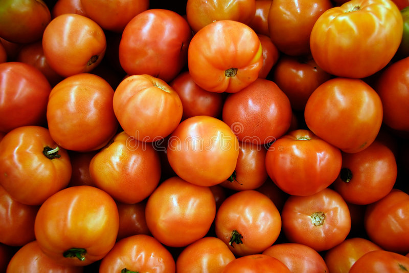 Download Groupe de tomates image stock. Image du orange, configuration - 82103