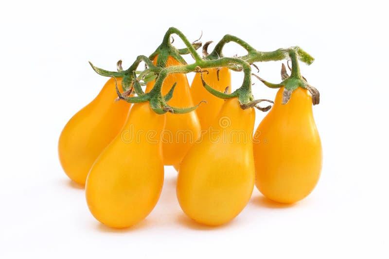 Groupe de tomates-cerises jaunes d'isolement photographie stock libre de droits