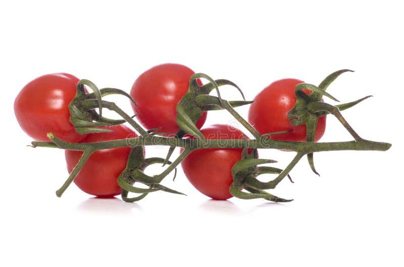 Groupe de tomates de vigne coupées images libres de droits