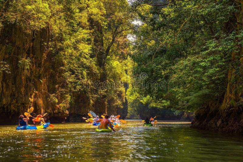 Groupe de touristes kayaking dans la jungle de palétuvier images stock