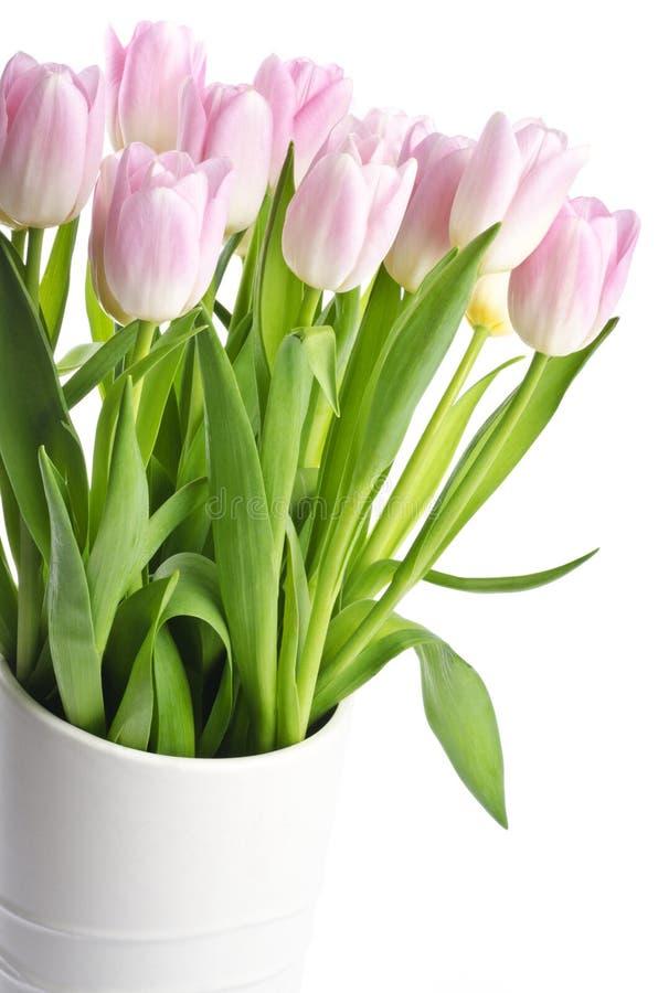 Groupe de tulipes rose-clair dans un vase blanc photographie stock