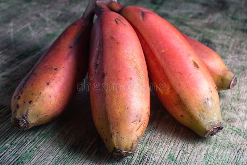 Groupe de variété rouge de banane en Amérique du Sud image stock