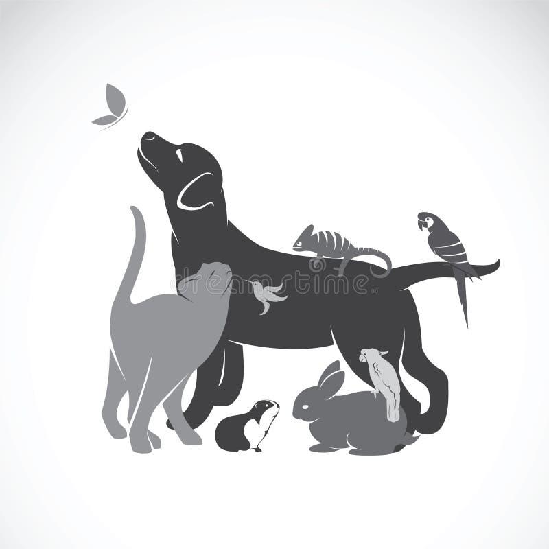 Groupe de vecteur d'animaux familiers illustration stock