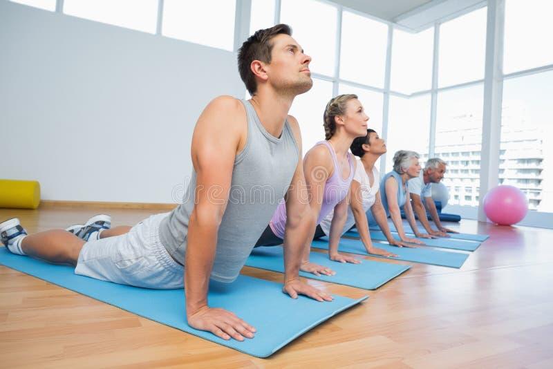Groupe faisant la pose de cobra dans la rangée à la classe de yoga image stock
