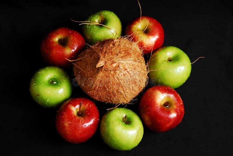 Groupe frais coloré de fruits image libre de droits