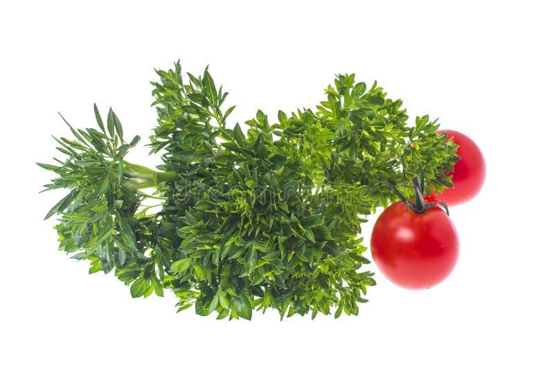 Groupe frais d'isolement de persil et de tomate-cerise photographie stock