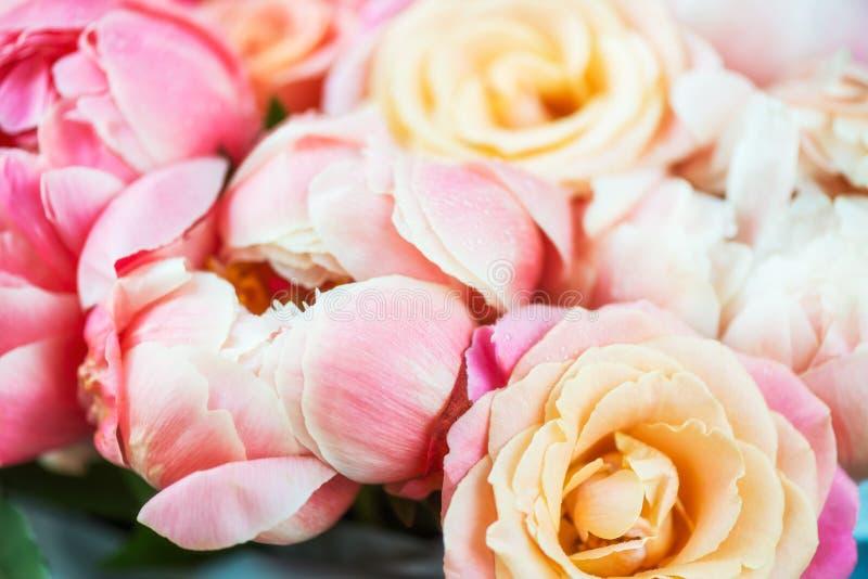 Groupe frais de pivoines et de roses roses  photos stock