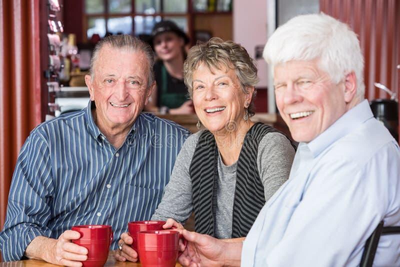 Groupe mûr heureux dans le café photographie stock libre de droits