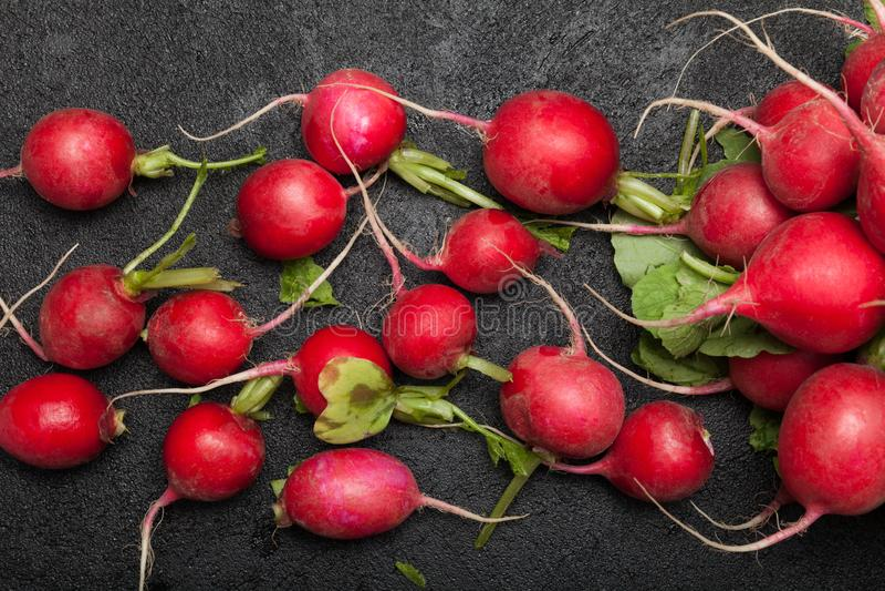 Groupe sale de radis d'agriculture Agriculture de nourriture images stock