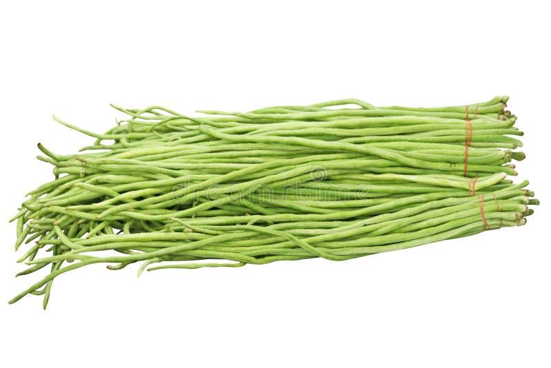 Groupe vert frais de haricot de yardlong d'isolement sur le fond blanc photo stock