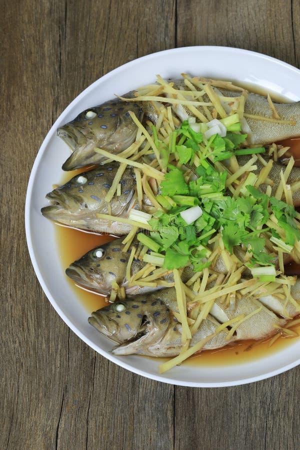 Groupers ψάρια ή βρασμένη στον ατμό σάλτσα σόγιας περκών θάλασσας των ταϊλανδικών θαλασσινών ι στοκ εικόνες με δικαίωμα ελεύθερης χρήσης