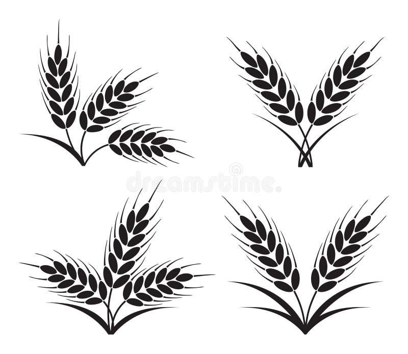 Groupes d'oreilles de blé, d'orge ou de seigle illustration de vecteur