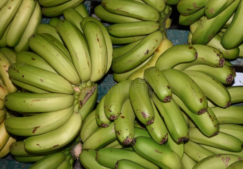 Groupes de bananes vertes fraîchement cultivées disponibles au marché photo libre de droits