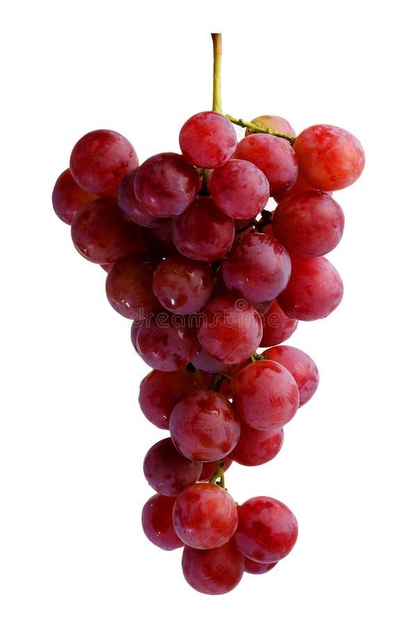 Download Groupes De Raisins Rouges Frais Photo stock - Image du dessert, agriculture: 77152452
