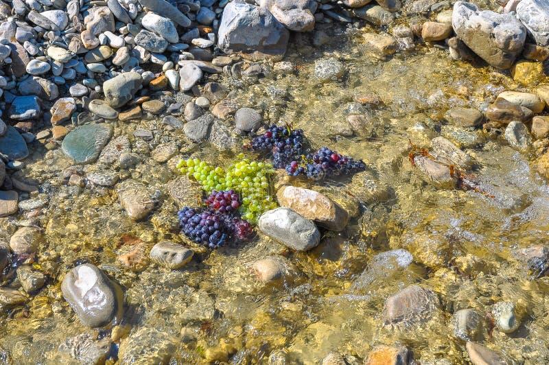 Groupes de raisins verts et noirs dans une crique rocheuse photographie stock libre de droits
