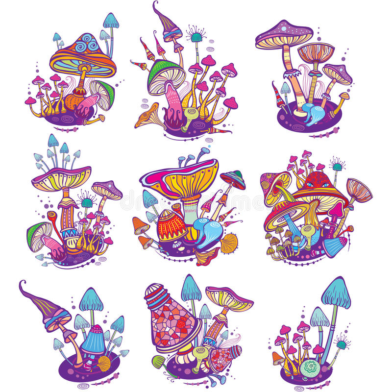 Groups of decorative mushrooms vector illustration