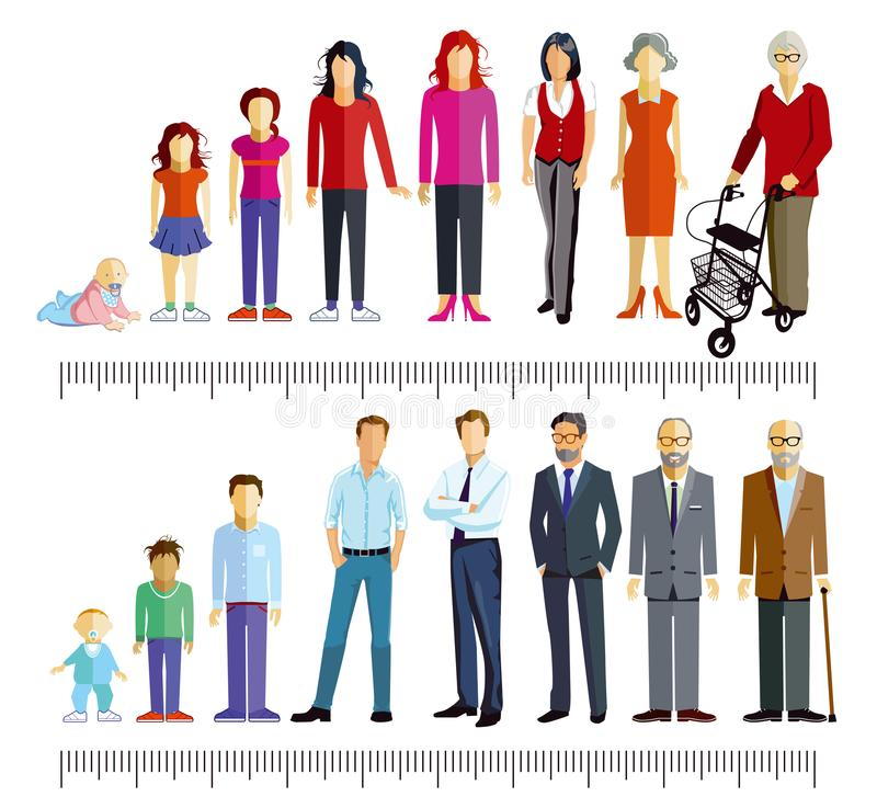 Groups of men and women vector illustration