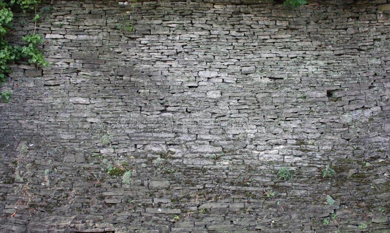 Groutless Brick5 foto de stock royalty free
