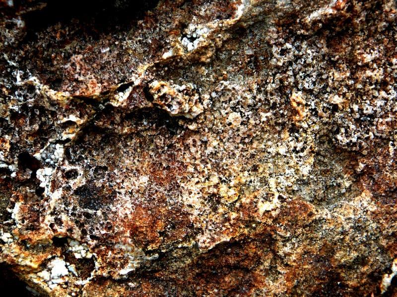 Grov brun stenbakgrund och textur royaltyfri fotografi