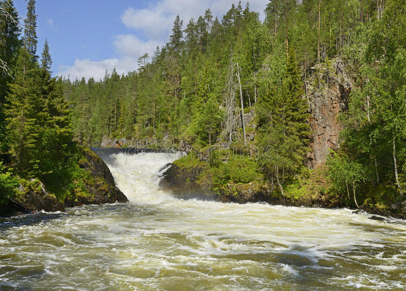 Grov flod med forsar royaltyfria foton