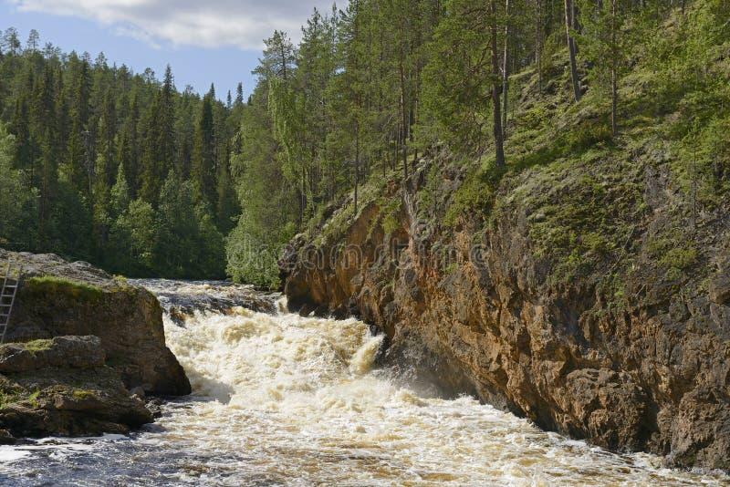 Grov flod med forsar royaltyfri fotografi