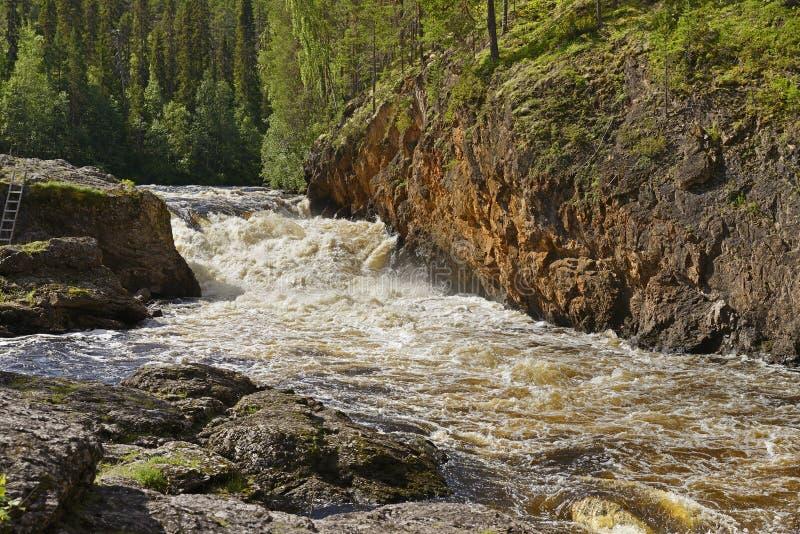 Grov flod med forsar royaltyfri bild