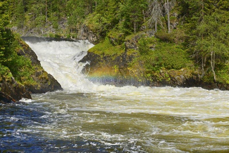 Grov flod med forsar och regnbågen royaltyfri bild