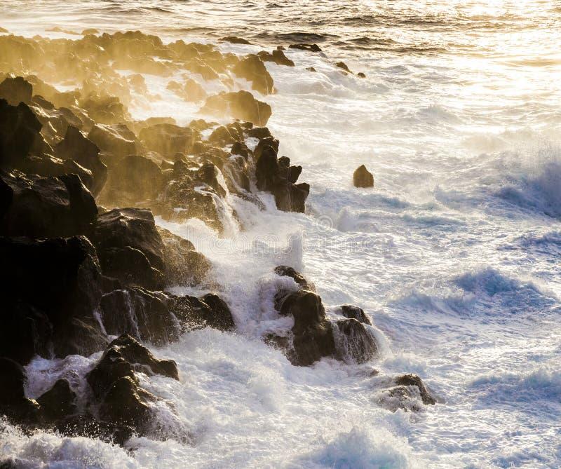 Grov kust med enorma vågor arkivfoto