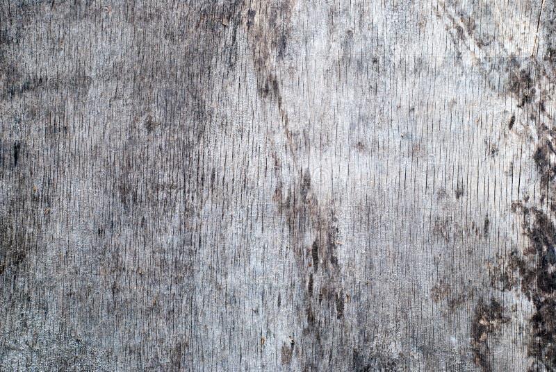 Grov stenv?gg med sprickor av gr? f?rger arkivfoto