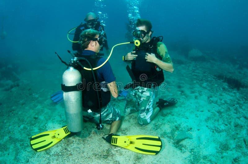 grova dykdykare lärer scubaen arkivfoto